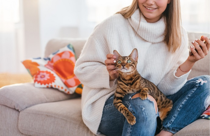 Veterinarians' 11-Step Guide for Cat Owners